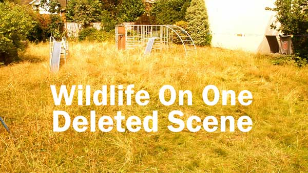 Wildlife on one deleted scene